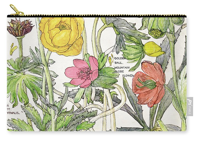 Flowers Carry-all Pouch featuring the painting Ambrosia Vi by Mindy Sommers