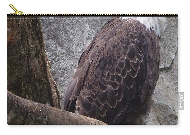 Eagle Carry-all Pouch featuring the photograph American Bald Eagle by Steven Natanson