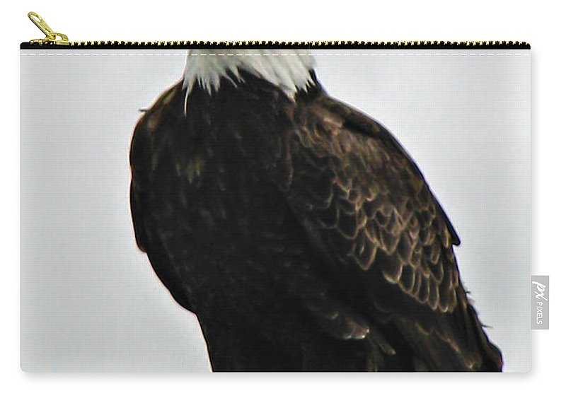 Haliaeetus Leucocephalus Carry-all Pouch featuring the photograph American Bird by Robert Bales