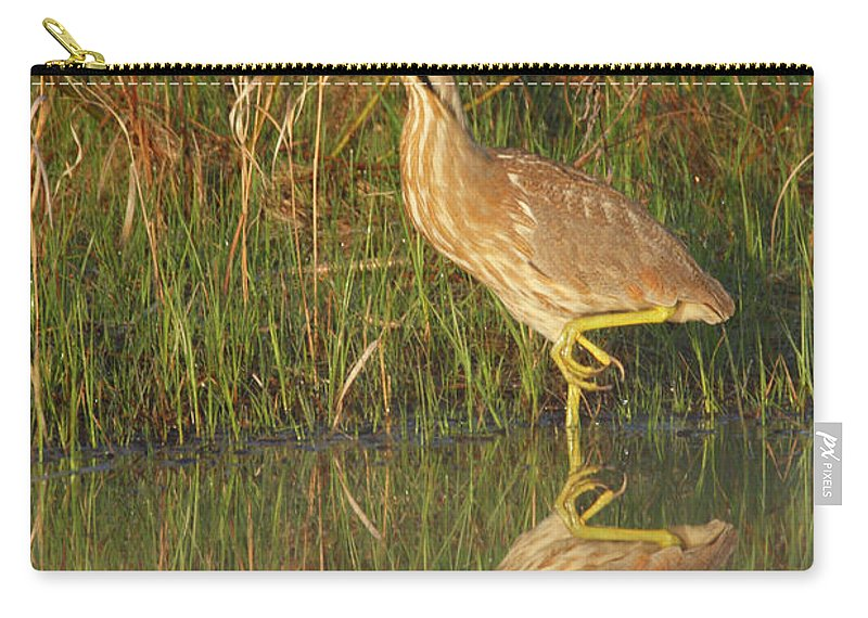 Shore Carry-all Pouch featuring the photograph American Bittern Along The Shore by Mark Wallner