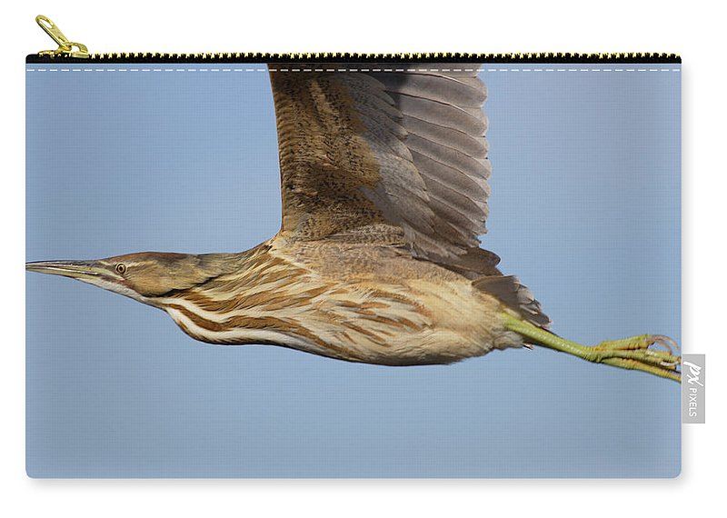 Native Carry-all Pouch featuring the photograph American Bittern Flies By by Mark Wallner