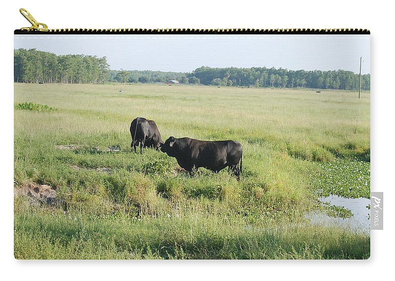 Cows Carry-all Pouch featuring the photograph American Cattle by Rob Hans