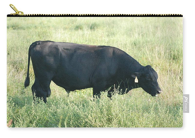 Cows Carry-all Pouch featuring the photograph American Cow by Rob Hans