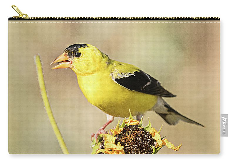 Bird Carry-all Pouch featuring the photograph American Goldfinch On Sunflower by Dennis Hammer