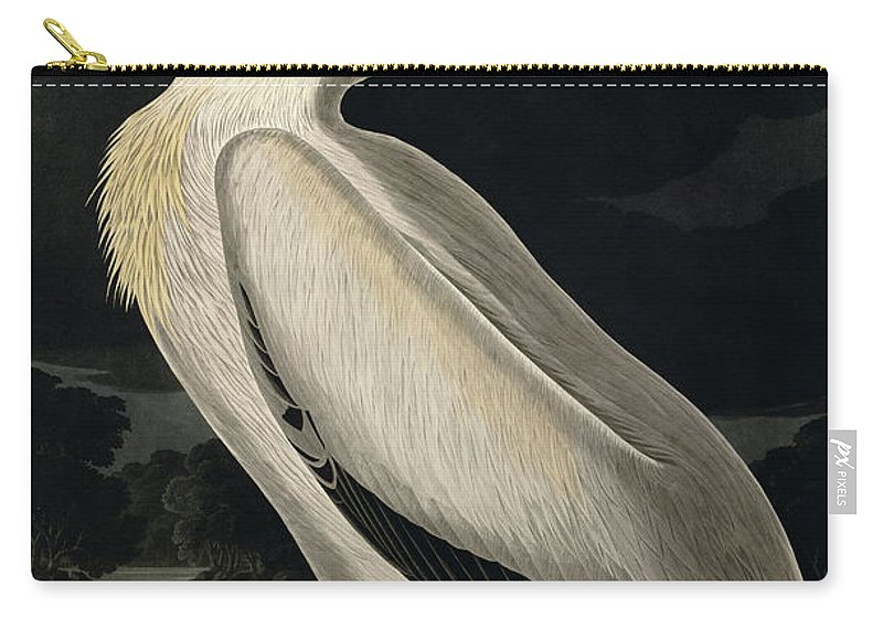 American White Pelican Carry-all Pouch featuring the painting American White Pelican by John James Audubon