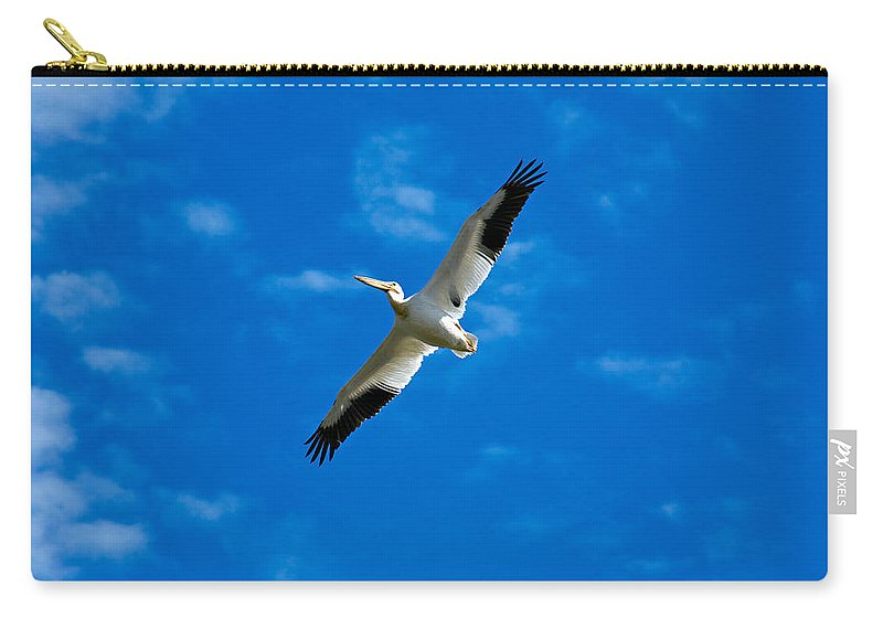 American Carry-all Pouch featuring the photograph American White Pelican by Marilyn Hunt