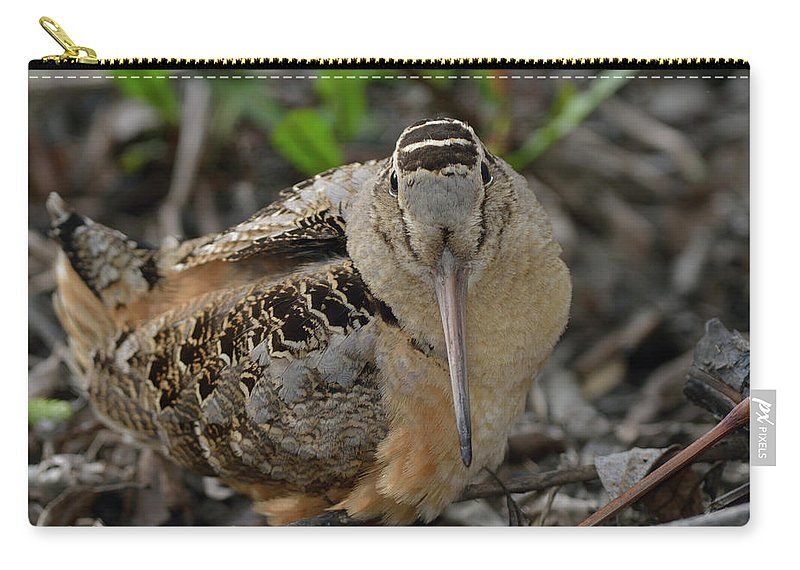 North American Carry-all Pouch featuring the photograph American Woodcock by Mark Wallner