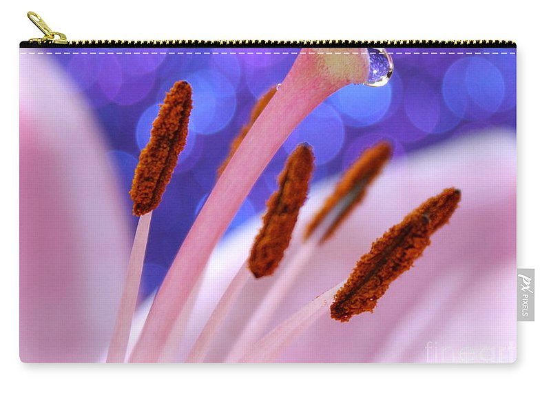 Daylily Carry-all Pouch featuring the photograph Among Friends by Krissy Katsimbras
