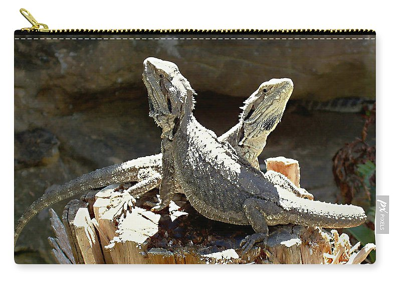 Amphion And Zethus Carry-all Pouch featuring the photograph Amphion And Zethus by Ellen Henneke