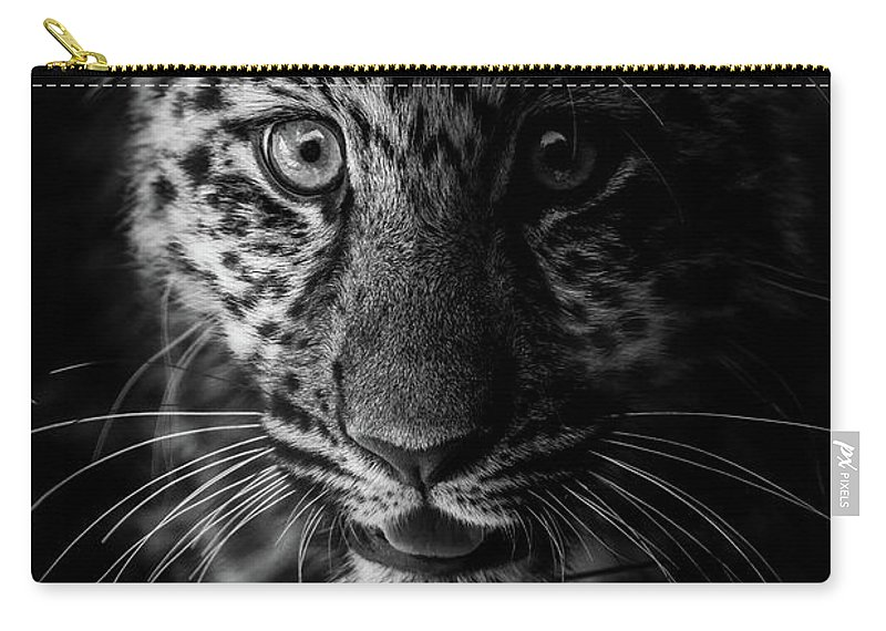 Leopard Carry-all Pouch featuring the photograph Amur Cub by Dennis Greenhill