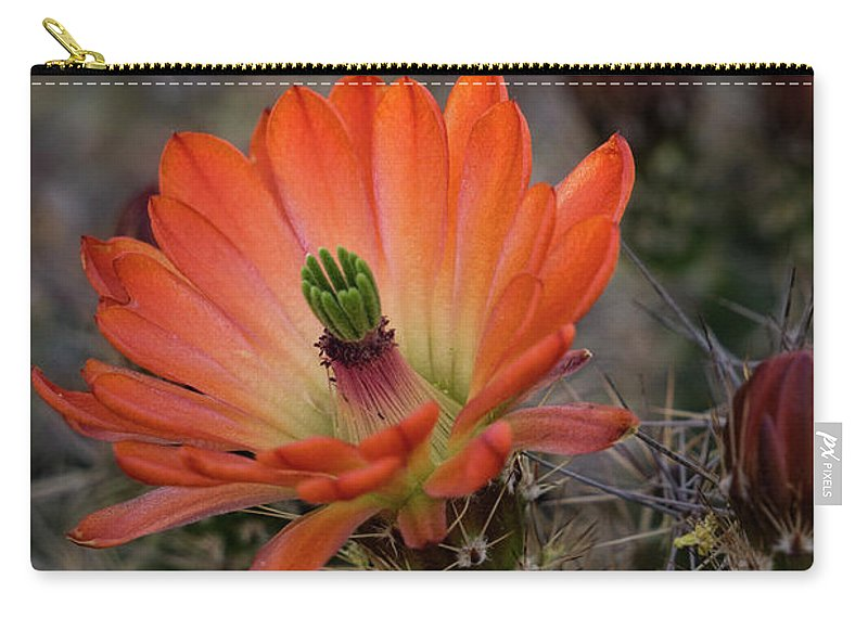 Arizona Carry-all Pouch featuring the photograph An Orange Beauty Of A Hedgehog by Saija Lehtonen