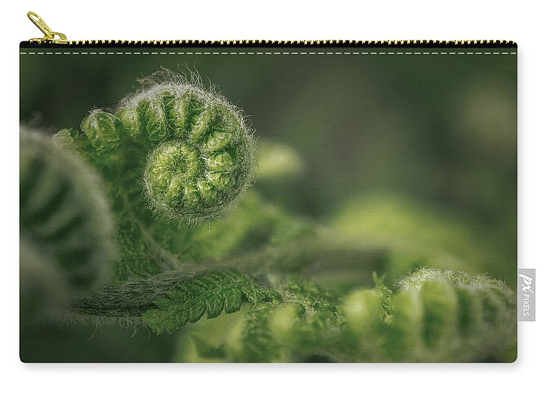 Nature Carry-all Pouch featuring the pyrography Ancient Forest by Hanna Tor