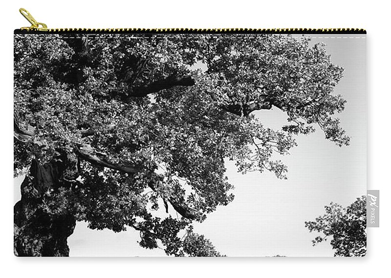 Woodland Carry-all Pouch featuring the photograph Ancient Oak, Bradgate Park by John Edwards