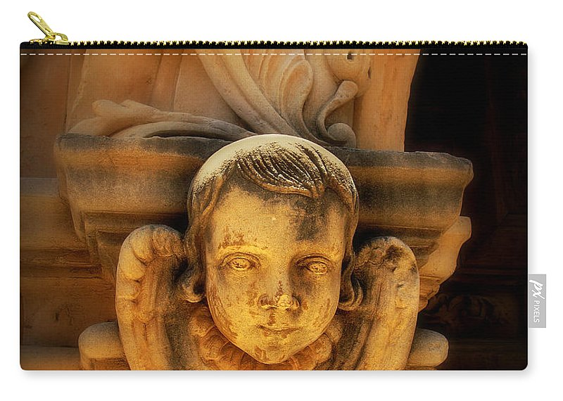 Angel Carry-all Pouch featuring the photograph Angel Face by Perry Webster