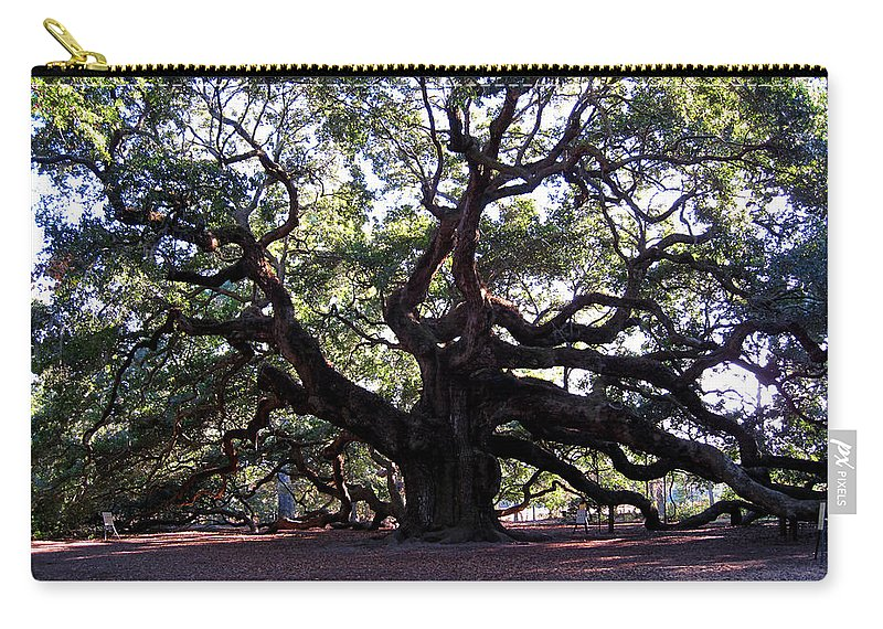 Photography Carry-all Pouch featuring the photograph Angel Oak II by Susanne Van Hulst