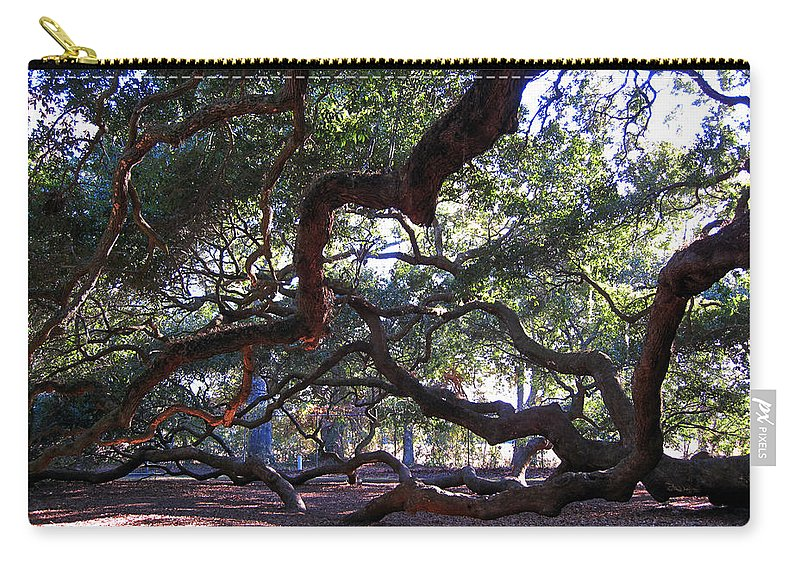 Photography Carry-all Pouch featuring the photograph Angel Oak Side View by Susanne Van Hulst