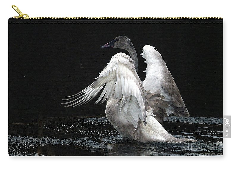 Trumpeter Swan Carry-all Pouch featuring the photograph Angel Wings 2 by Sharon Talson