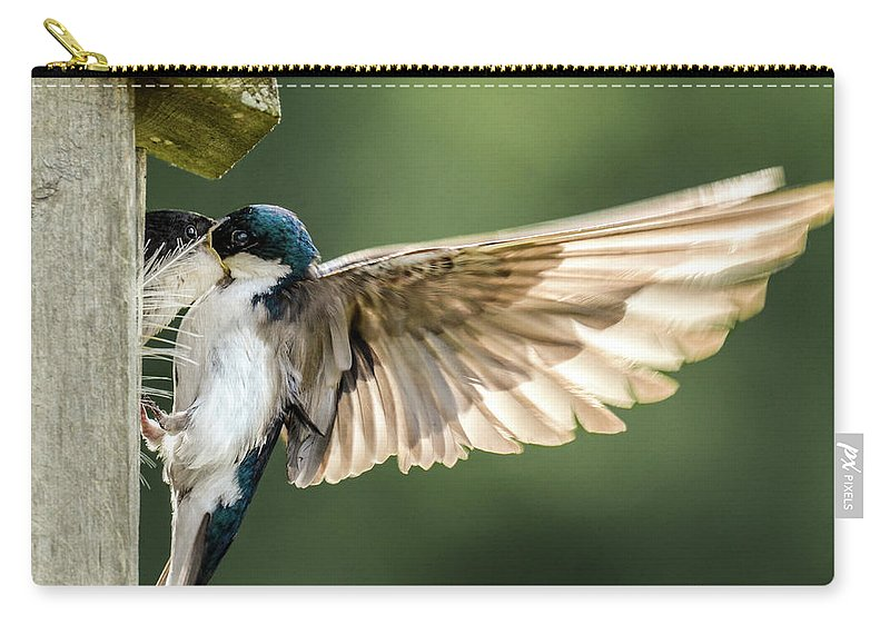 Tree Swallow Carry-all Pouch featuring the photograph Angel Wings by Amy Porter