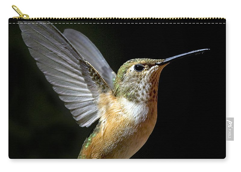 Rufous Hummingbird Carry-all Pouch featuring the photograph Angelic Hummer by Randall Ingalls