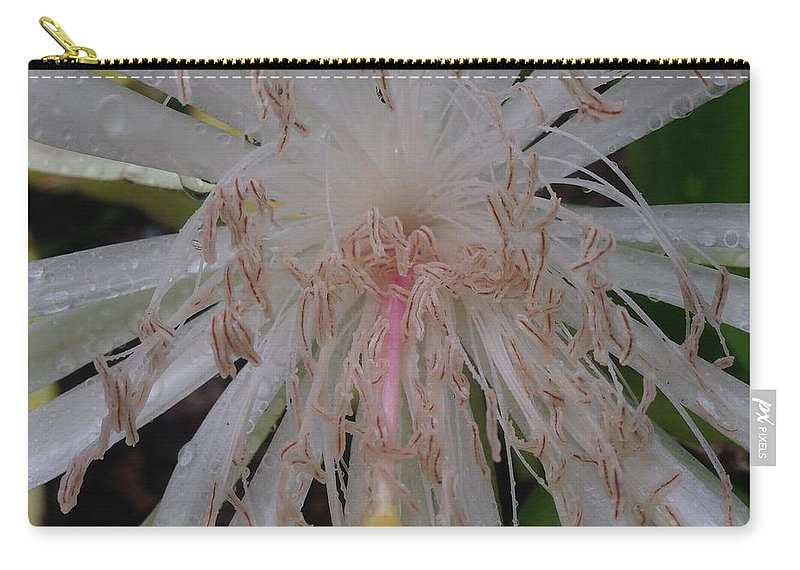 Cactus Flower Culebra West Indies Angels Tears Carry-all Pouch featuring the photograph Angels Tears by Sarah Horton