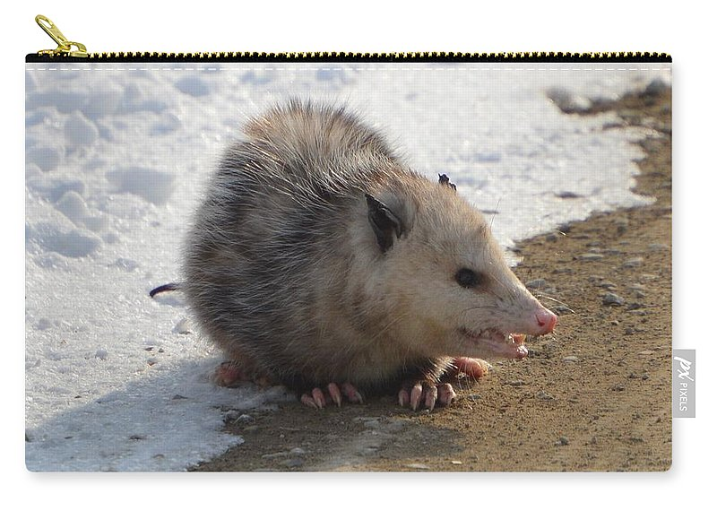 Possum Carry-all Pouch featuring the photograph Anger by Bonfire Photography