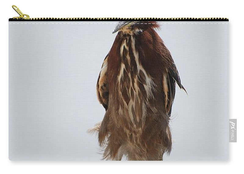 Birds Carry-all Pouch featuring the photograph Angry Bird by Rob Hans