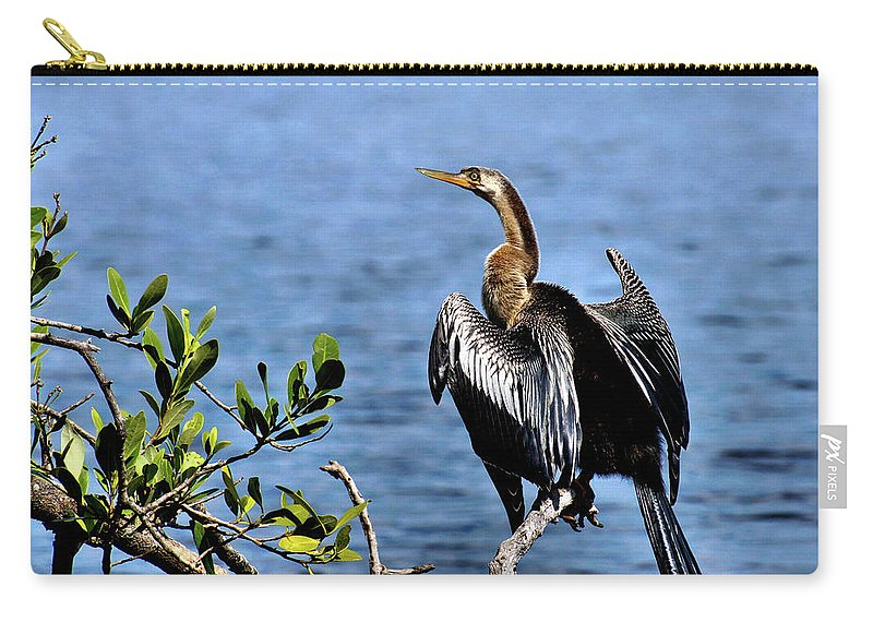 Animal Carry-all Pouch featuring the photograph Anhinga 1 by John Trommer