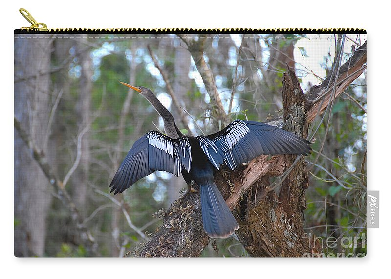 Anhinga Carry-all Pouch featuring the photograph Anhinga by David Lee Thompson