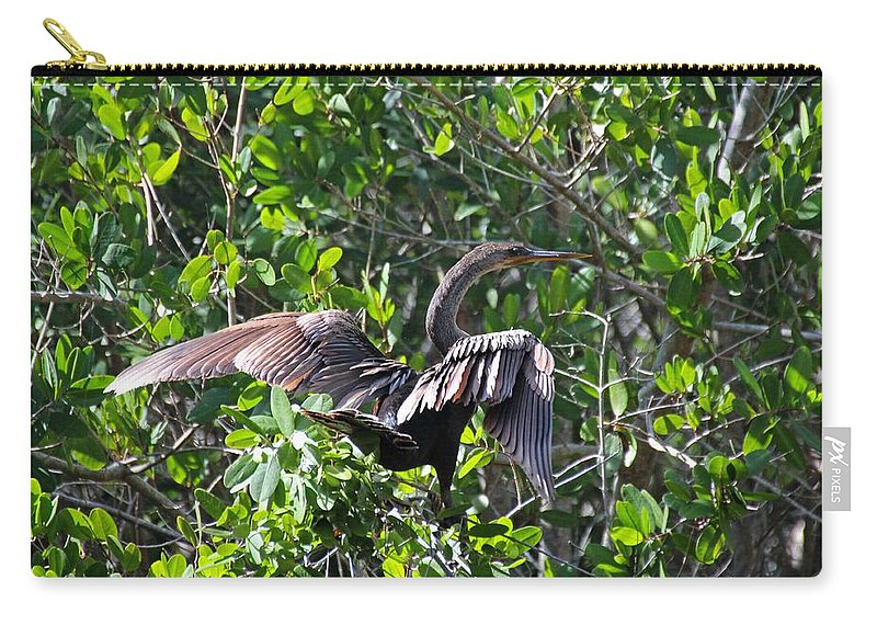 Anhinga Carry-all Pouch featuring the photograph Anhinga In The Sun by Michiale Schneider