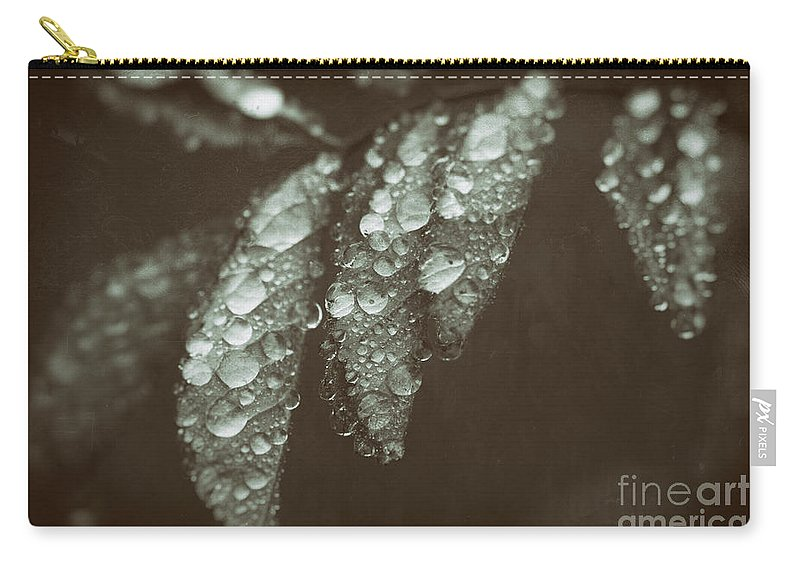 Leaf Carry-all Pouch featuring the photograph Annointed by C L Lassila