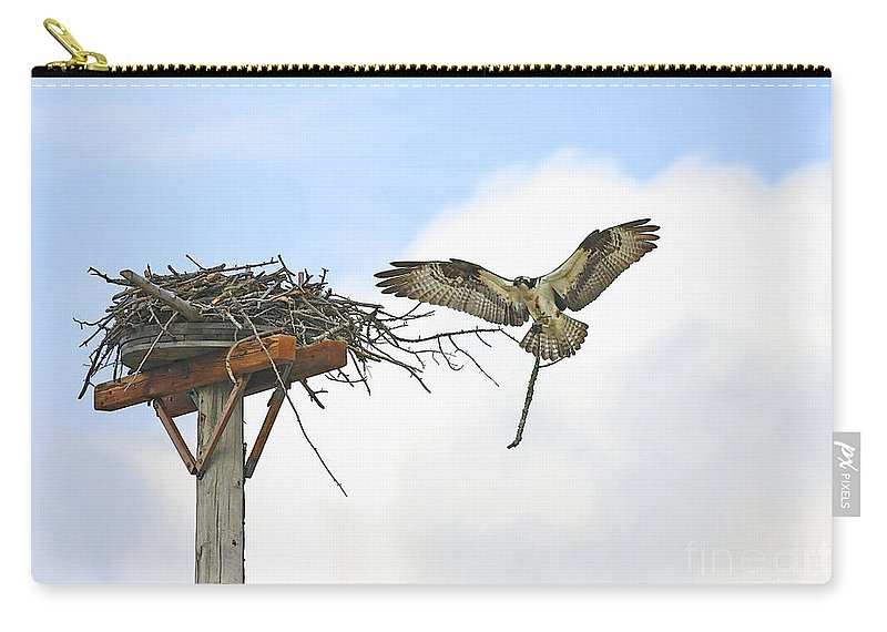 Osprey Carry-all Pouch featuring the photograph Another Twig For The Nest by Deborah Benoit
