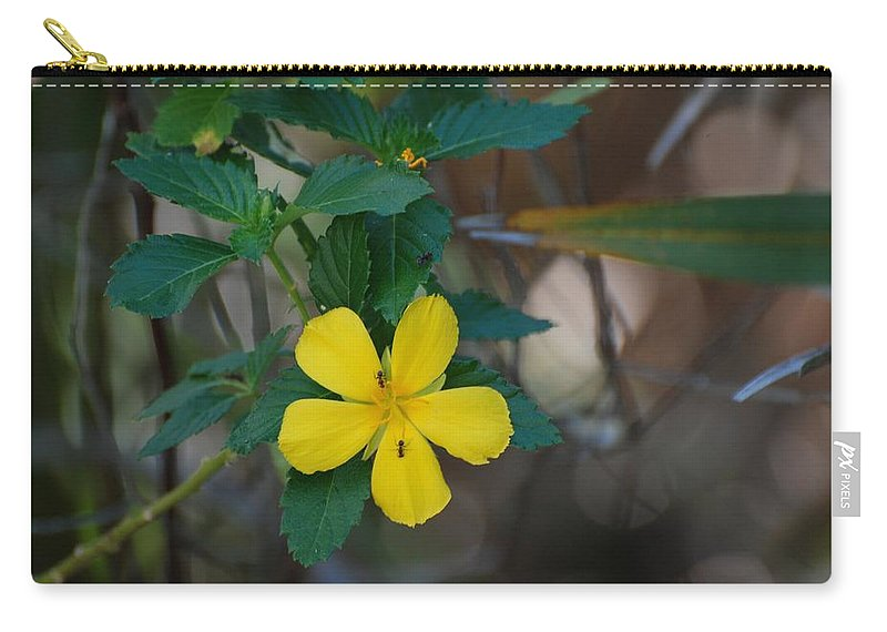 Macro Carry-all Pouch featuring the photograph Ant Flowers by Rob Hans