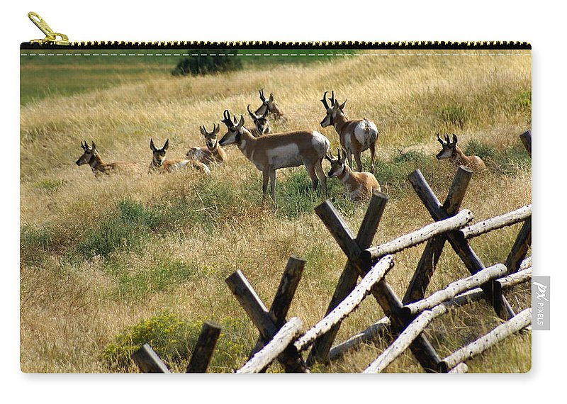 Wildlife Carry-all Pouch featuring the photograph Antelope 2 by Marty Koch