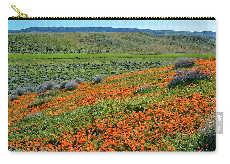 Antelope Valley California Poppy Reserve Carry-all Pouch featuring the photograph Antelope Valley Poppy Reserve by Kyle Hanson