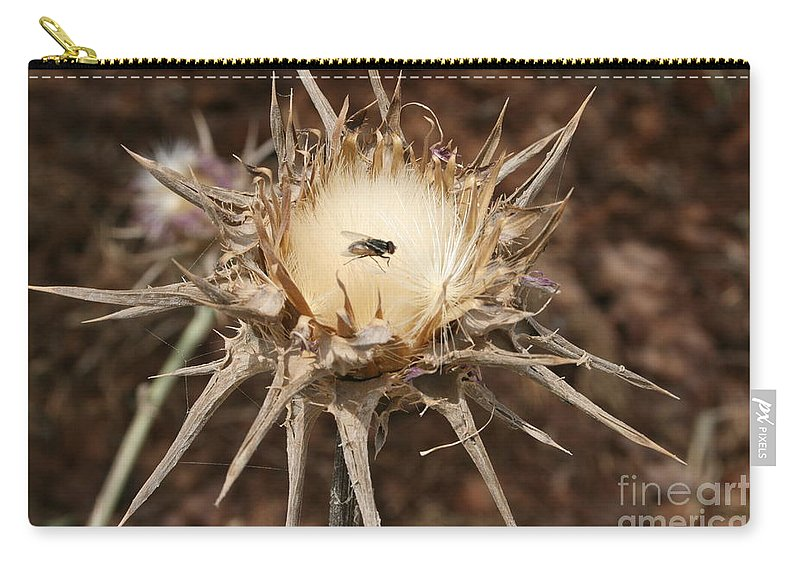 Thorn Carry-all Pouch featuring the photograph Antithesis - A Fly On A Thorn  by Idan Badishi