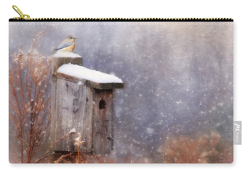Bird Carry-all Pouch featuring the photograph Apartment 25 by Lori Deiter