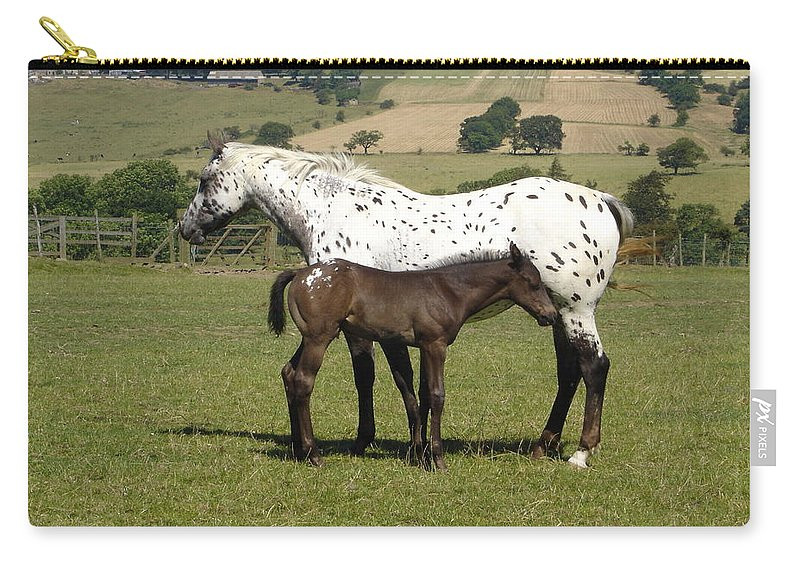 Horse Carry-all Pouch featuring the photograph Appaloosa Mare And Foal by Susan Baker