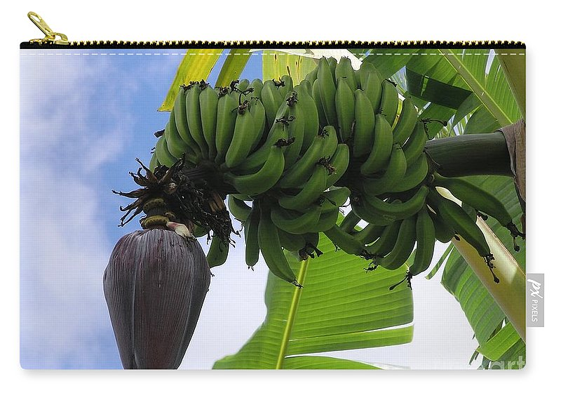Green Carry-all Pouch featuring the photograph Apple Bananas by Mary Deal