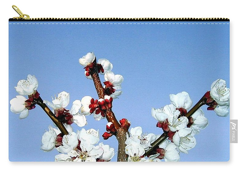 Apricot Blossoms Carry-all Pouch featuring the photograph Apricot Blossoms by Will Borden