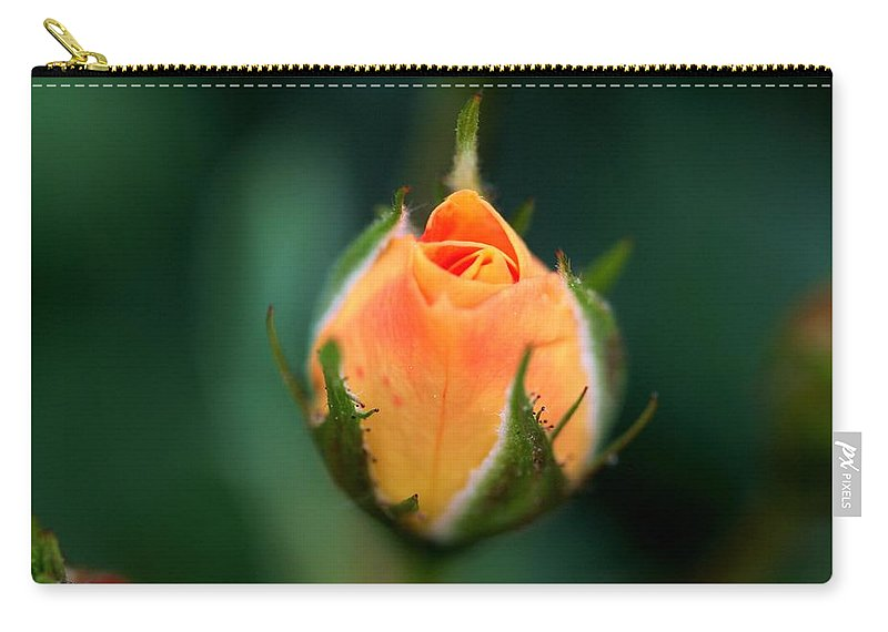 Rose Carry-all Pouch featuring the photograph Apricot Rose Bud 1 by Kristina Jones