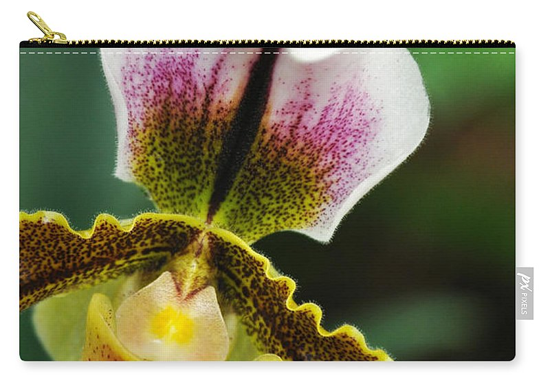 Los Angeles County Arboretum Carry-all Pouch featuring the photograph Arboretum Tropical House Orchid II by Kyle Hanson