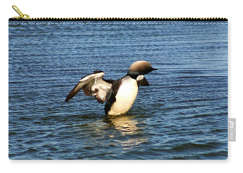 Loon Carry-all Pouch featuring the photograph Arctic Loon by Anthony Jones