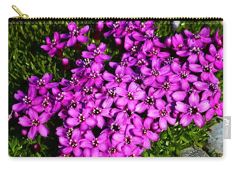 Arctic Carry-all Pouch featuring the photograph Arctic Wild Flowers by Anthony Jones
