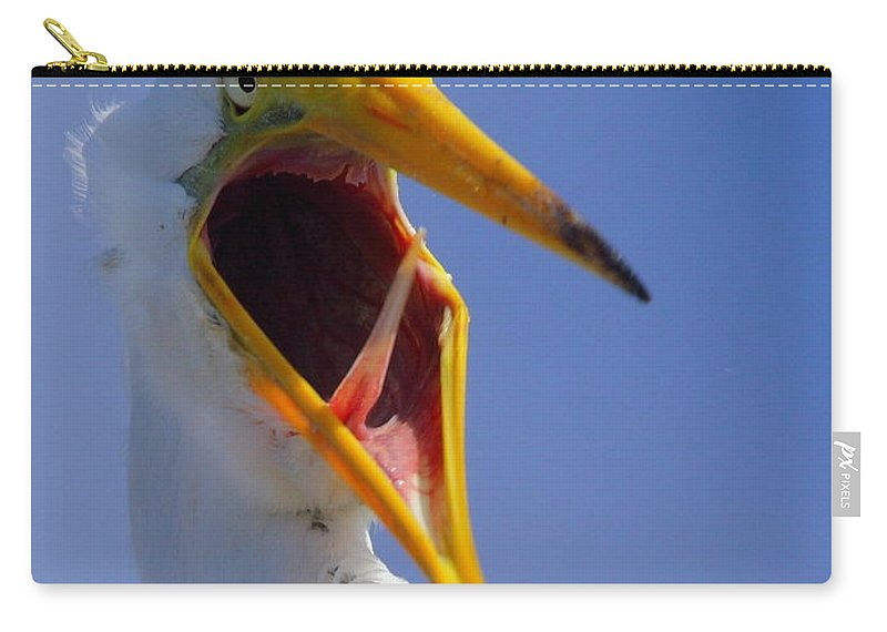 Great Egret Carry-all Pouch featuring the photograph Are You Serious by Andrew McInnes