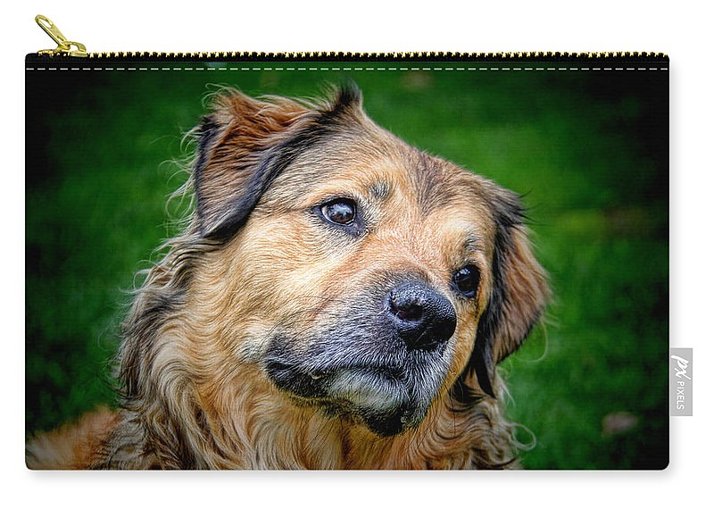 Are You Sure About That Carry-all Pouch featuring the photograph Are You Sure About That by Mariola Bitner