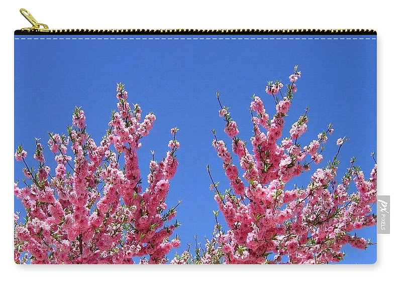 Arizona Carry-all Pouch featuring the photograph Arizona 3 by Will Borden