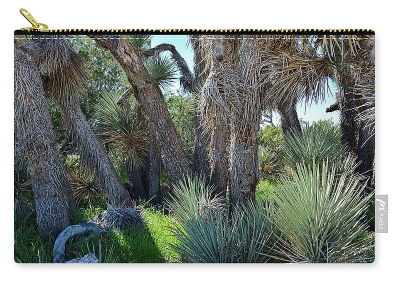 Arthur B Ripley Desert Woodland State Park Carry-all Pouch featuring the photograph Arthur B Ripley Desert Woodland State Park by Kyle Hanson