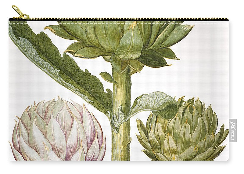 1613 Carry-all Pouch featuring the photograph Artichoke, 1613 by Granger