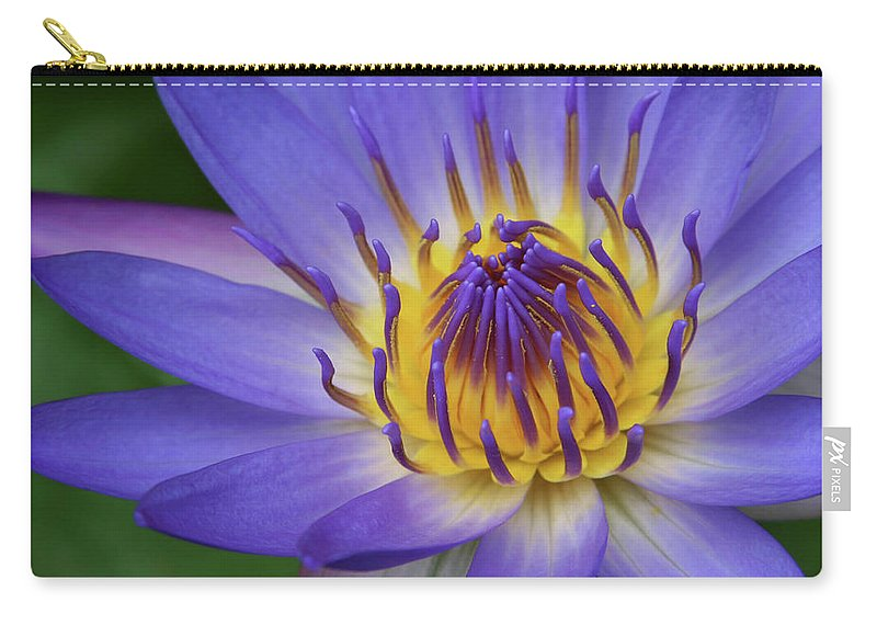 Waterlily Carry-all Pouch featuring the photograph The Lotus Flower by Sharon Mau