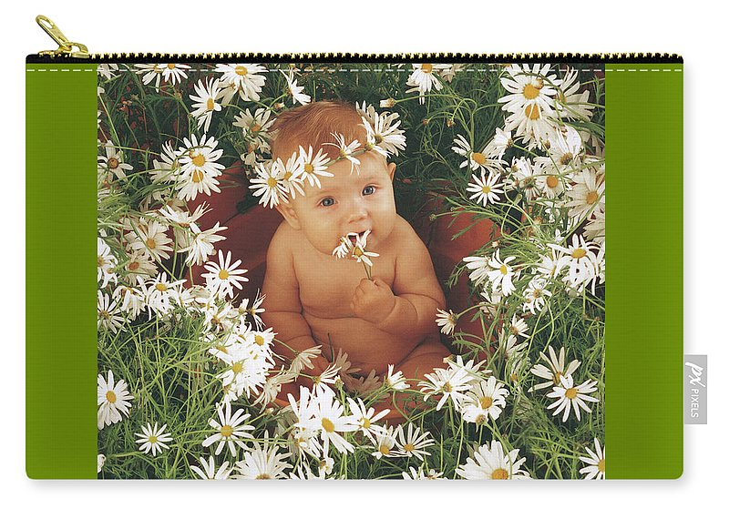 Daisies Carry-all Pouch featuring the photograph Daisies by Anne Geddes